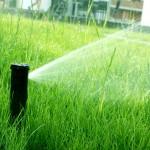 Systemy nawadniania green bud