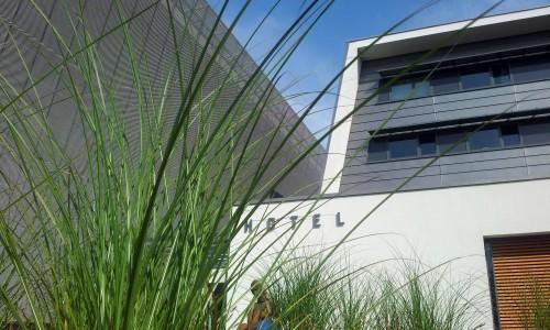 ZIELEN POD HOTELEM