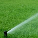 Systemy nawadniania zraszacze green bud