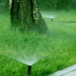 Systemy nawadniania zraszacze statyczne green bud