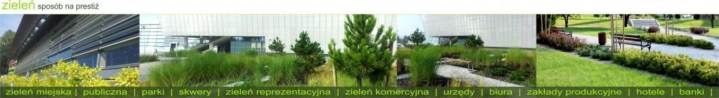 zieleń publiczna baner
