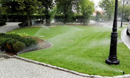 trawnik z rolki nawadnianie