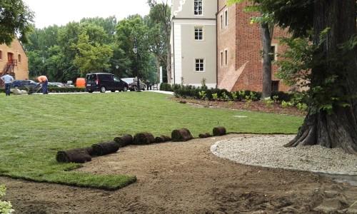 trawnik z rolki topacz